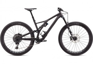 Specialized Stumpjumper Evo Pro Satin Carbon/Mint